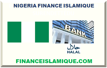 NIGERIA FINANCE ISLAMIQUE